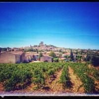 Chateneuf-Du-Pape: 700 anni di storia del vino