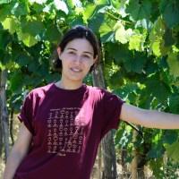 Baia's Wine, dalla Georgia, tradizione e competenza