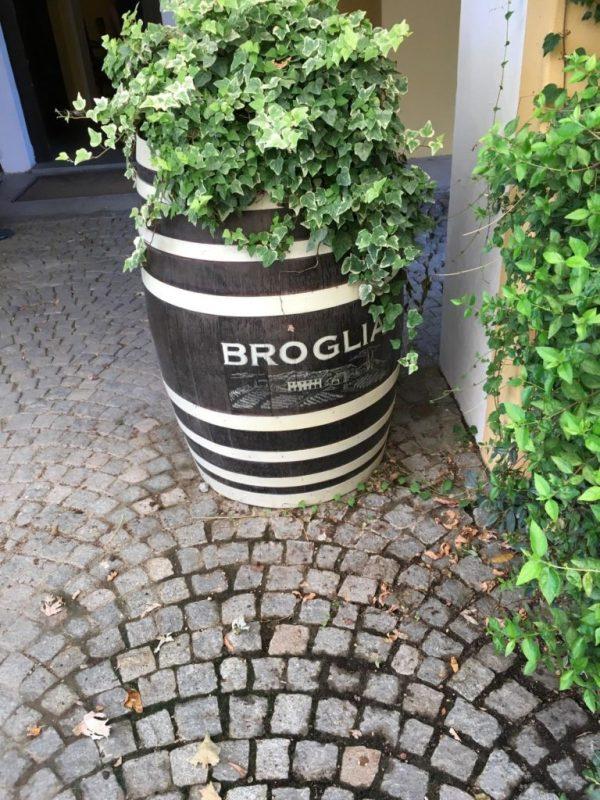 Piemonte Gavi Broglia