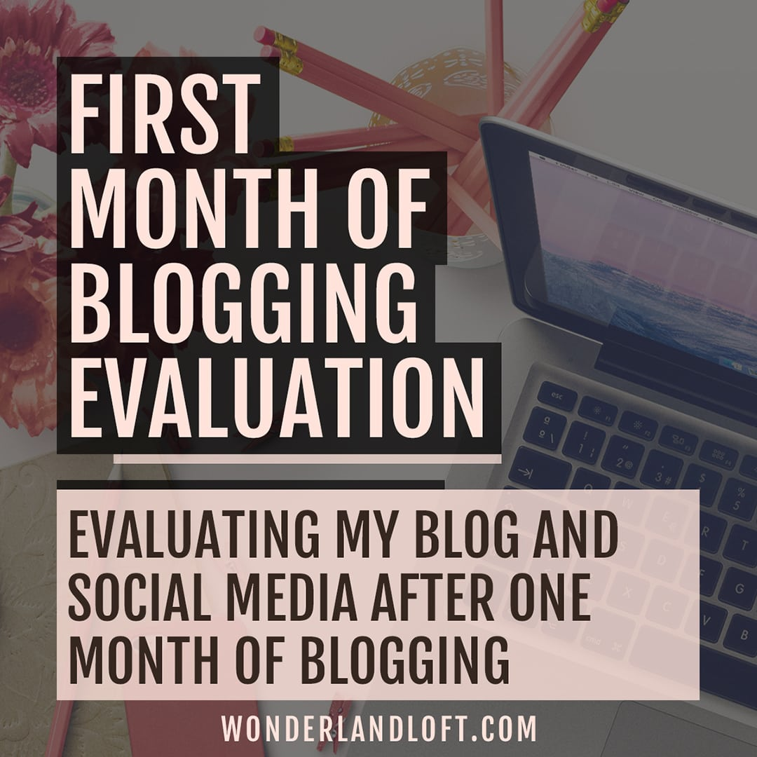Evaluation of my first month of blogging