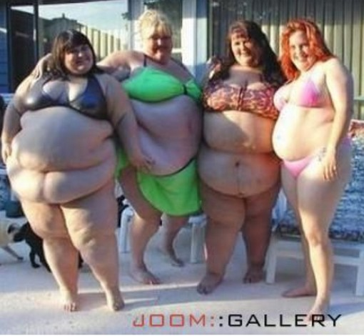 Fat company of sexy ladies