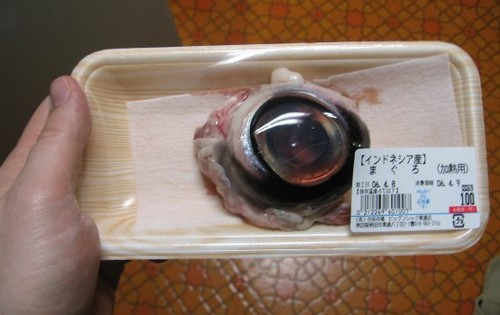 Tuna Eyeball