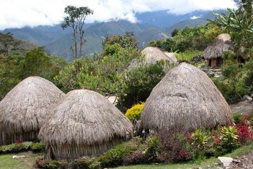 South Baliem Valley HOUSES