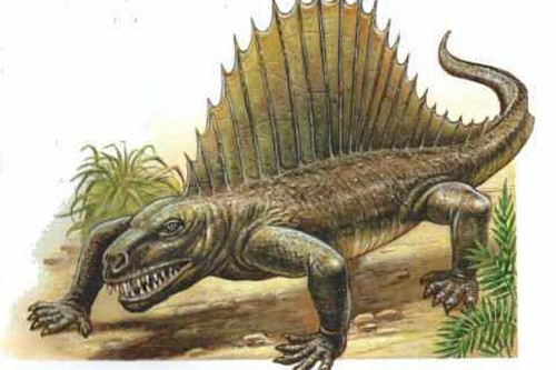 10 Popular Myths About Dinosaurs Debunked