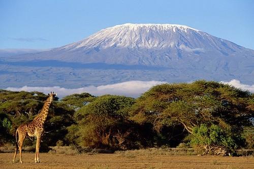 Amazing Volcanoes mountain in Tanzania