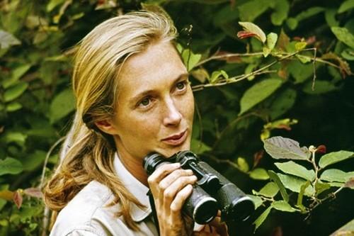 Jane Goodall (1934)