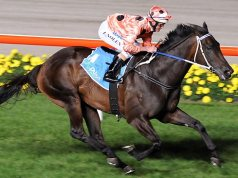 Black Caviar Best Race Horses