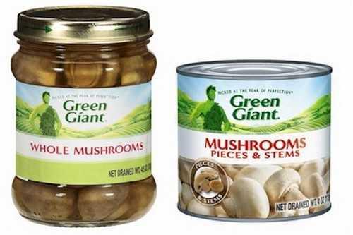 Bizarre Ingredients in Delicious Foods