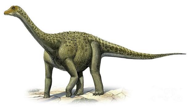 Titanosaurus Interesting Kaiju Monsters
