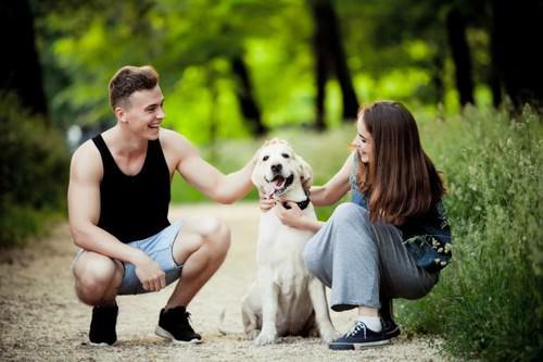 Having a dog good for your social life