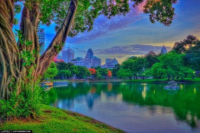Lumpini Park Bangkok Thailand at Lake Before Sunrise