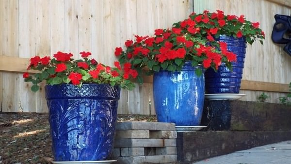 Top 10 Landscaping Ideas for 2019