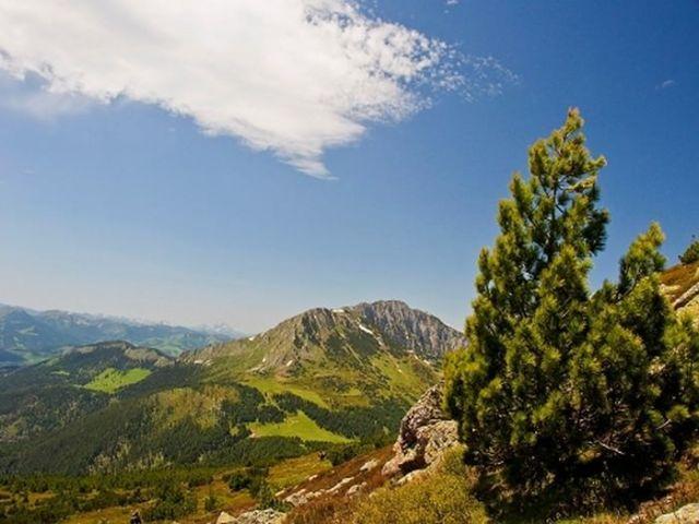 Hidden Attractions of Montenegro