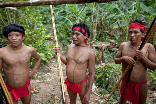 Burial Ritual Yanomami Tribe