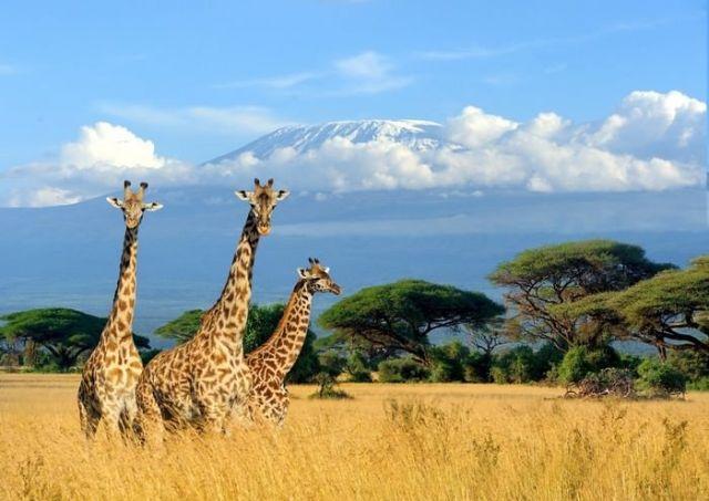 Mount Kilimanjaro beautiful places to visit in Africa