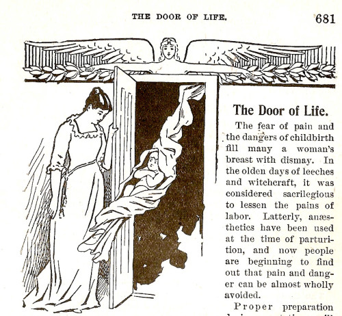 The Door of Life - Alone - CSMA