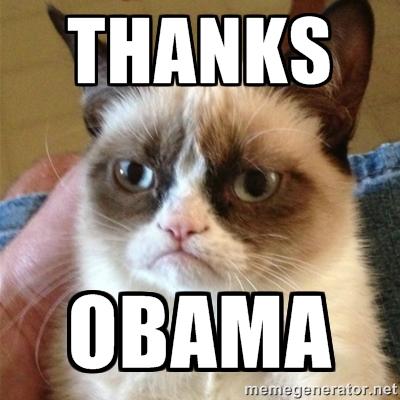 Grumpy Cat Thanks Obama
