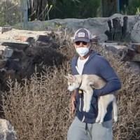 Leonardo DiCaprio dogs