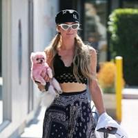 Paris Hilton pink dog