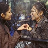 Lynn Chen, Michelle Krusiec, Saving Face