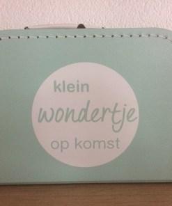 Klein wondertje op komst -liefsvanlauren.nl