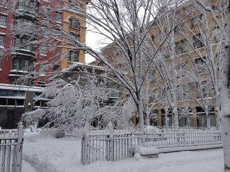 blizzard-2-009