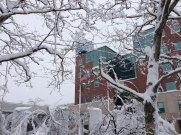 blizzard-2-015