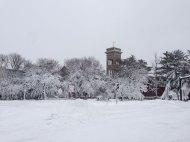 blizzard-1-015