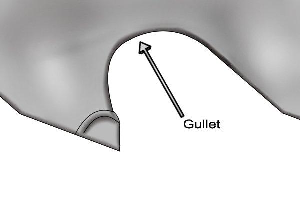 Saw Gullet