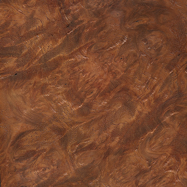 Amboyna Burl For Sale