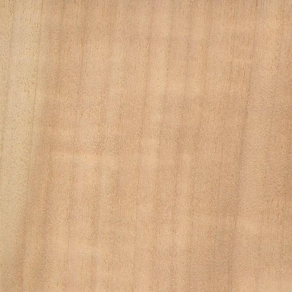 Aspen Vs Poplar Lumber