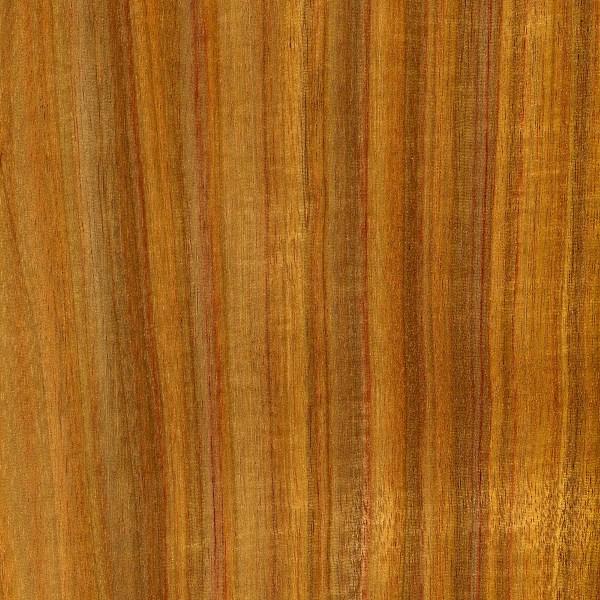Canarywood  The Wood Database  Lumber Identification