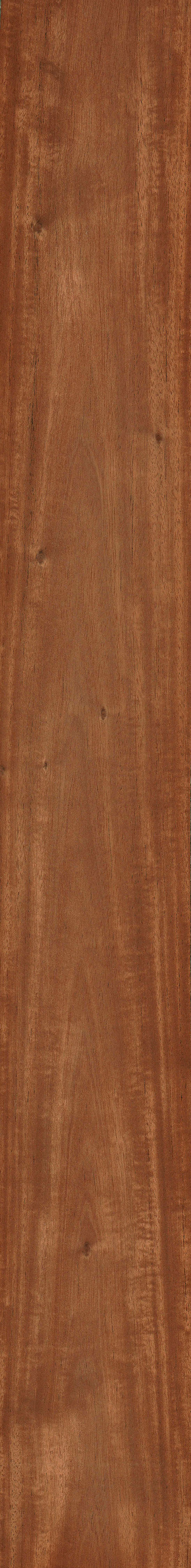 honduran mahogany the wood