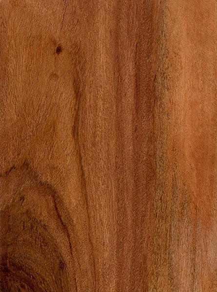 Rhodesian Teak  The Wood Database  Lumber Identification
