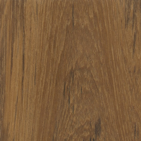 Teak  The Wood Database  Lumber Identification Hardwood