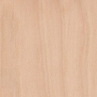 Downy Birch | The Wood Database - Lumber Identification ...