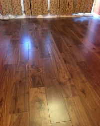 Black American Walnut wood London stock super engineered ...
