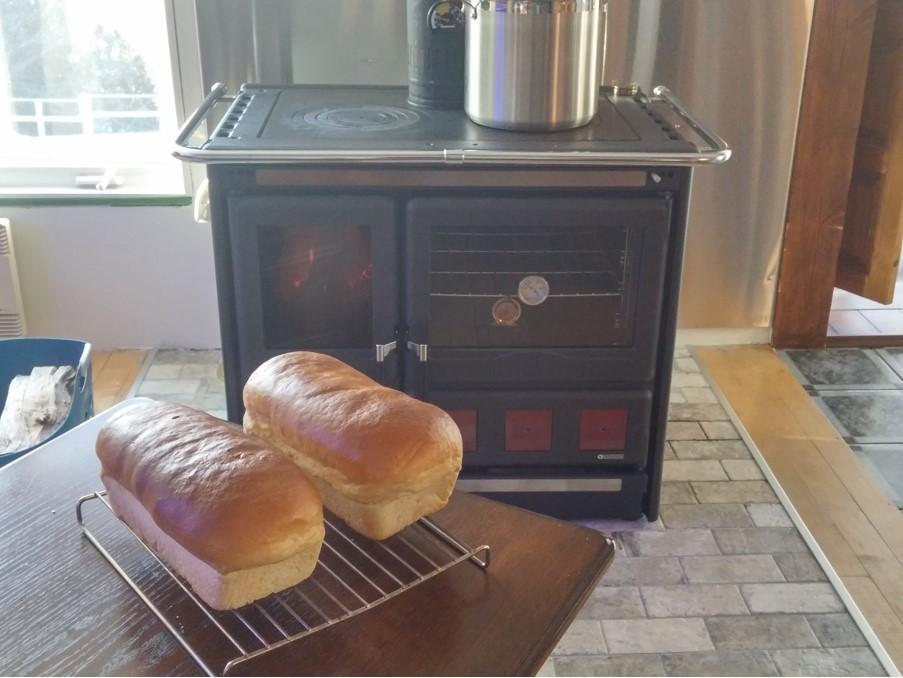 Wood Burning Cook Stove La Nordica Quot Rosa Xxl Quot