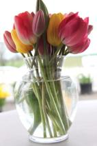 tulip bouquet_1