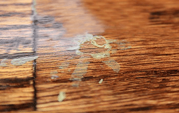 Finish Flaws Avoid Common Wood Floor Finish Failures