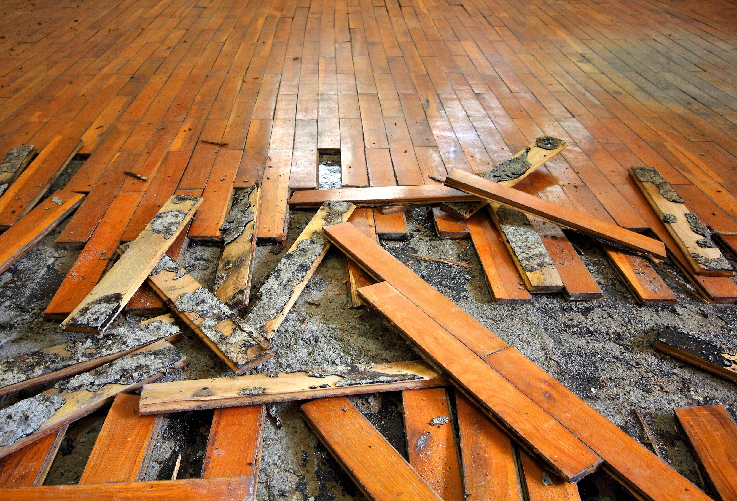 How to repair a water damaged wood floor for Wood floor repair