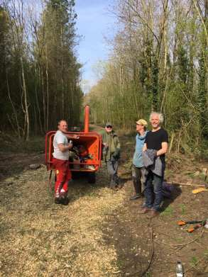 Chipper in the Woodland with Volunteers