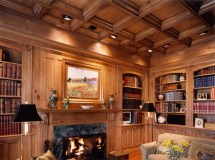 C Offered Wood Ceiling Ideas