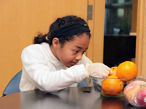 An elementary student embeds cloves into oranges, to make pomander balls.
