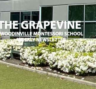 The Grapevine, May 27, 2020