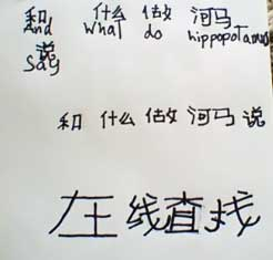 A page with Chinese writing
