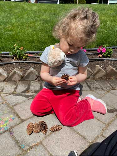 A toddler sits on pavers examining fir cones in the sunlight