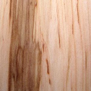 Alder  Woodlandscouk