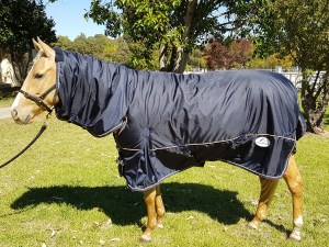 Winter Horse Rugs