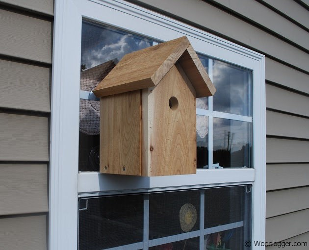 build your own outdoor kitchen aid gas cooktop window bird house nestbox